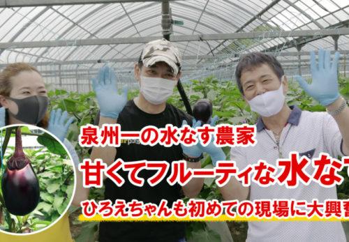 水なす栽培で刺身の食べ方-1024x576